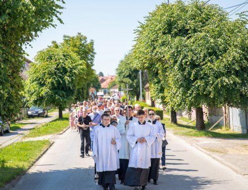 Sjemeništarci Sisačke biskupije sudjelovali na proslavi blagdana sv. Kvirina